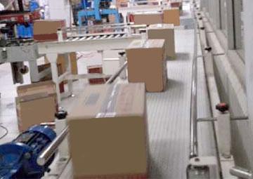 Conveyor Untuk Industri Kardus | Trindo Sukses Mandiri