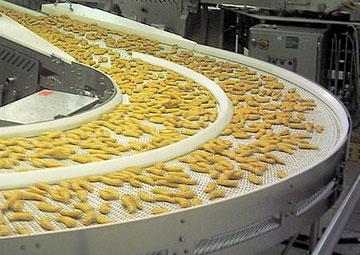 Conveyor Untuk Industri Makanan Proses | Trindo Sukses Mandiri